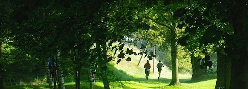 So idyllisch kann es an der Spree sein. Mauerwegläufer waren beim Etappenlauf von Ingo Schulze unterwegs. (Foto: Marion Setzefand)